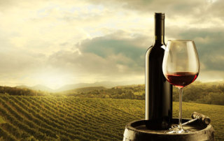 Carta vinos Pura Brasa